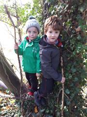 Senior Infants Exploring in the Forest